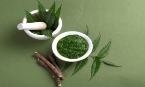 15 Medicinal Advantages of Neem Tree and Neem Leaves